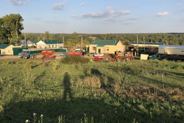 крестьянское фермерское хозяйство(КФХ)