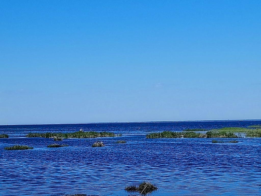 В 100 метрах от мастерской находится финский залив.